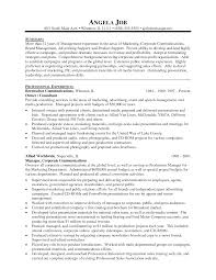 professional resume format for senior management position best professional resume format for senior management position samples executive resumes professional cvs career resume design marketing