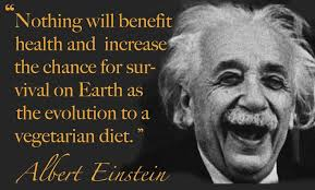 Image gallery for : einstein quotes vegetarian