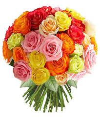 fleurs images?q=tbn:ANd9GcT