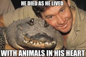 Steve Irwin Crikey Quotes. QuotesGram