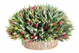 <b>Композиция</b> Весеннее головокружение (<b>501</b> тюльпан) купить за ...