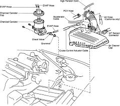 1998 honda accord fuse box location on 1998 images free download 1998 Honda Accord Fuse Box 2001 toyota corolla evap system diagram 2005 honda accord fuse panel 2004 honda accord fuse box diagram 1998 honda accord fuse box diagram