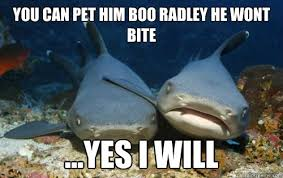 you can pet him boo radley he wont bite ...yes i will ... via Relatably.com