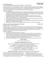ceo chief executive officer resume resume samples