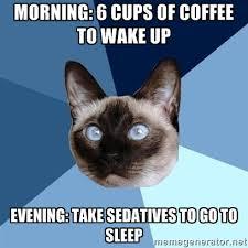 Chronic Illness Cat | Meme Generator via Relatably.com