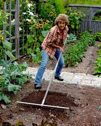 Small Picture How to Lay Out a Planting Bed Martha Stewart