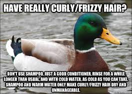 Have really curly/frizzy hair? Don't use shampoo, just a good ... via Relatably.com