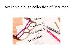 resume sites of india   free resume search sites