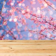<b>Laeacco Spring Blooming Flowers</b> Light Bokeh Baby Child ...