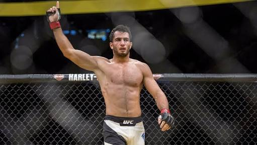 Gegard Mousasi Expresses Interest In 205 Weight Division