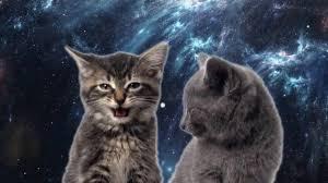 Котик - <b>Мяу мяу мяу</b> , <b>Мур мур мур</b>