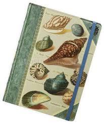 <b>Книга для записей Shells</b> (a133699) — купить книги по оптовым ...
