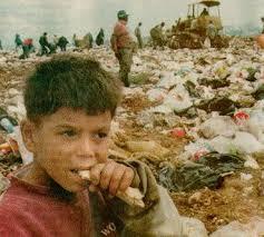 Resultado de imagem para foto pegando comida do lixo