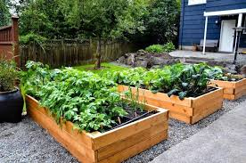 Small Picture Herb Garden Ideas 17 Best Ideas About Small Herb Gardens On