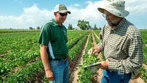online master s degree in agricultural extension education master s in agricultural extension education