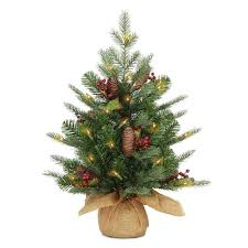 National Tree Company 2-ft Pre-Lit <b>Nordic</b> Spruce Tree with Battery ...