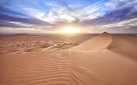 Resultado de imagen de desert