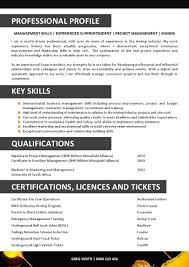 making a professional resume resume cover letters making a professional resume resume world professional resume service 1 resume we can help professional