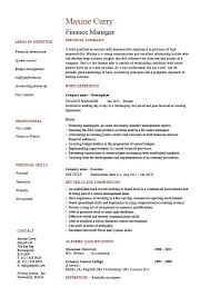 finance manager resume  cv  example  sample  templates  auditing    finance manager resume