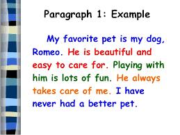 my favorite animal essay  wwwgxartorg five paragraph essay paragraph example my favorite pet