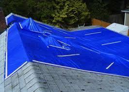 roof repair place: roof repair amp maintenance   roof repair amp maintenance