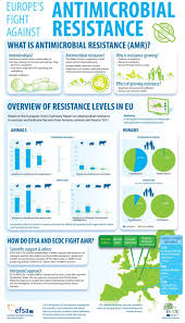 antimicrobial and antibiotic resistance the important facts what is antimicrobial resistance
