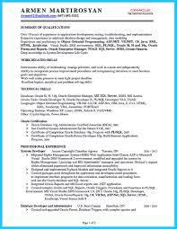 how professional database developer resume must be written how best database developer resume