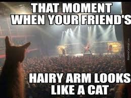 Metal Memes. Best Collection of Funny Metal Pictures via Relatably.com