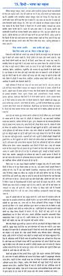 essay on the importance of hindi language in hindi