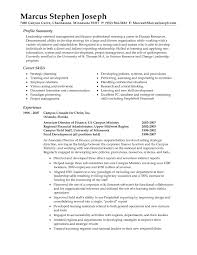 resume summary examples com resume summary examples to get ideas how to make remarkable resume 2