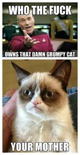 New-Grumpy-Cat-Meme-07.jpg via Relatably.com
