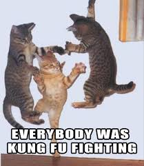 Everybody was Kung Fu fighting - Memes Comix Funny Pix via Relatably.com