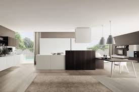 contemporary kitchen aluminum glass wood veneer kubic antis fusion fitted kitchens euromobil