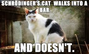 Schrodingers Cat Quotes. QuotesGram via Relatably.com