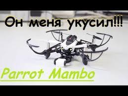 Необычный <b>квадрокоптер Parrot Mambo</b> | Распаковка и облёт ...