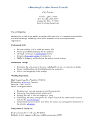 executive resume formats and examples  tomorrowworld coexecutive resume writers advertising executive resume example page