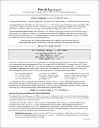 resume example business development online resume builder resume example business development sample business development resume laura smith proulx management consulting resume example for