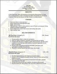 Real Estate Sales Agent Resume Sample  real estate resume download     Reentrycorps Real Estate Sales Agent Resume Sample