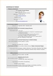 8 sample of curriculum vitae for job application pdf basic job examples of cv in english pdf