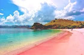 Image result for pantai pulau merah banyuwangi