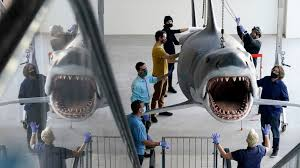 Bruce, the last '<b>Jaws</b>' shark, docks at the Academy Museum - ABC ...