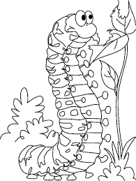 Small Picture Caterpillar Coloring Page Best Coloring Pages adresebitkiselcom