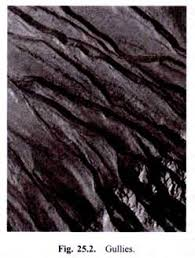 soil erosion essaysoil erosion  factors  types and causes  iv  landslides or slip erosion  soil erosion essay