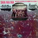 Is Here to Stay album by Sha Na Na
