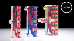 <b>New 3D printer</b> makes multi-material robots - YouTube