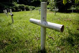 prisoners of profit the huffington post crosses made of metal pipes mark the graves of 32 unidentified bodies in a small hidden graveyard near the former dozier school for boys in marianna fla