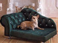 Диван для собак: лучшие изображения (44) в 2020 г.   Диван для ...