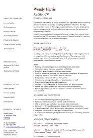 job description related keywords amp suggestions internal audit job internal auditors job description