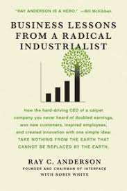 Purchase now - Business Lesson from a Radical Industrialist