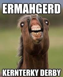 Funny Horse Memes on Pinterest | Horse Meme, Funny Horse Pictures ... via Relatably.com